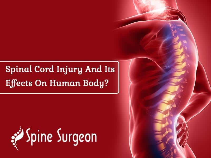 Spinal Cord Injury And Its Effects On Human Body?