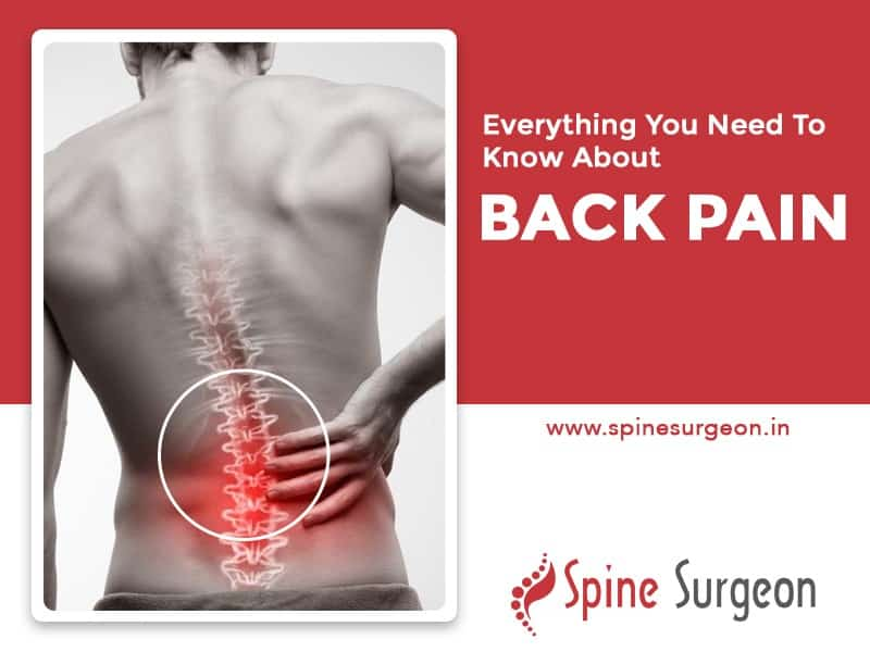 Everything You need to know about Back Pain